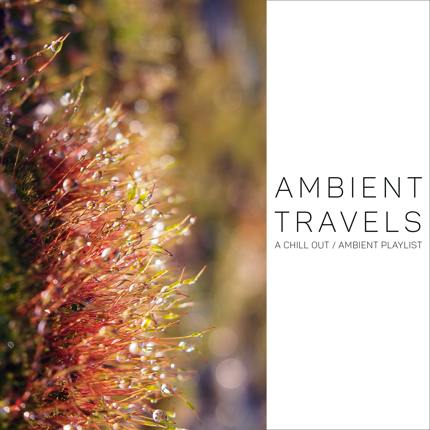 Ambient Travels (A Chill-Out / Ambient playlist)