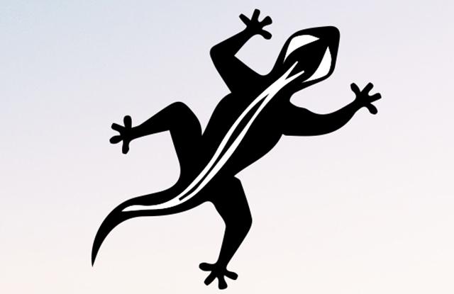 Disco Gecko (Label)