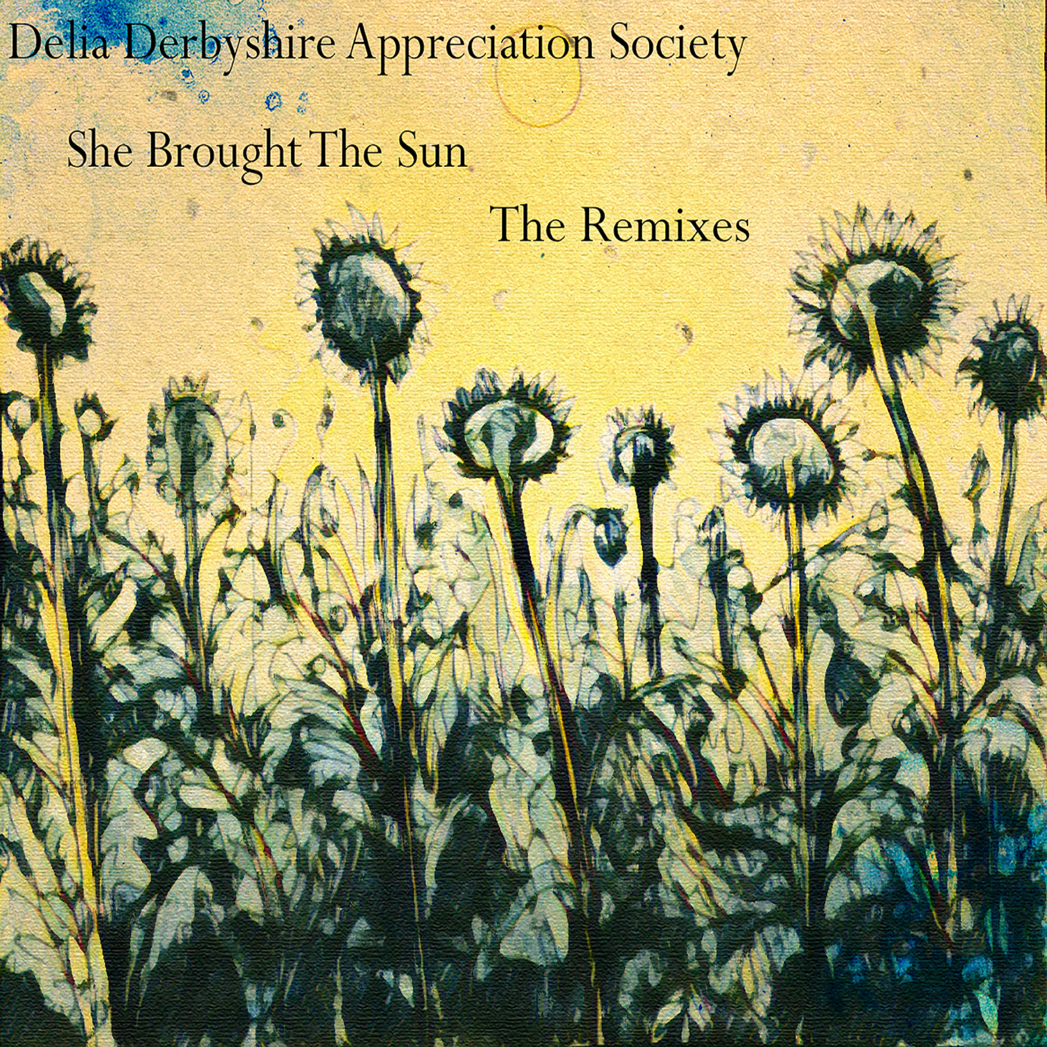 Delia Derbyshire Appreciation Society – She Brought the Sun – The Remixes